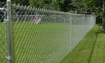 Electric Fencing for Bears